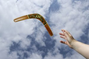 boomerang image for manes residency article